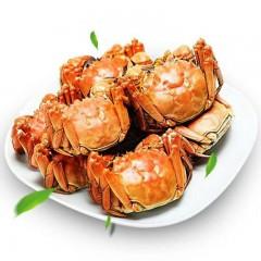 阳澄湖大闸蟹898型提货券 公蟹3.5两/只 母蟹2.8两/只 5对10只螃蟹礼盒提货卡 海鲜水产