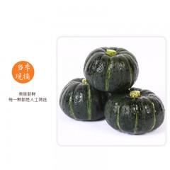贝贝南瓜板栗味 5斤装 宝宝辅食栗面日本南瓜新鲜蔬菜包邮 进口种源 粉糯香甜 小果