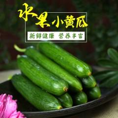 山东水果小黄瓜新鲜水果蔬菜无刺小黄瓜5斤装新鲜现摘