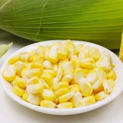 云南水果玉米甜玉米8斤装 即食生吃 现摘现发 新鲜玉米棒包谷特产