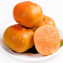 陕西秦岭甜脆柿 硬柿子新鲜水果  2.5kg包邮