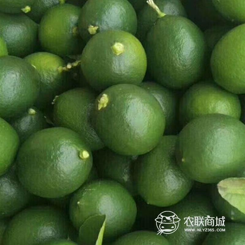 万宁青柠檬新鲜水果 5斤装